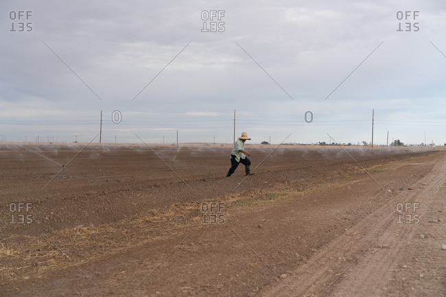 Farmer walking in field with newly planted crops