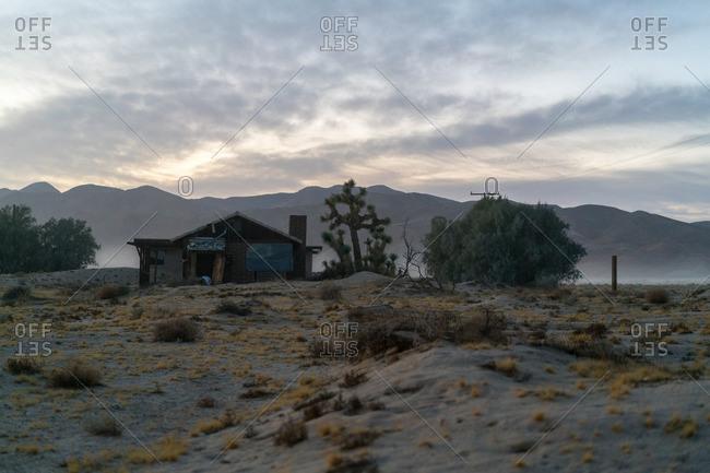Ramshackle abandoned house with Joshua tree in desert