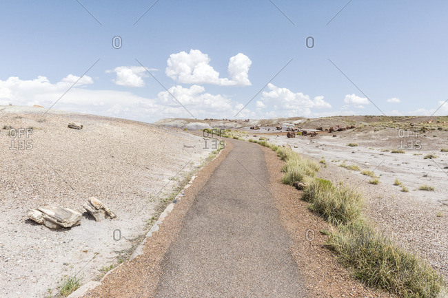 Hiking trail rail, Petrified Forest National Park, Arizona