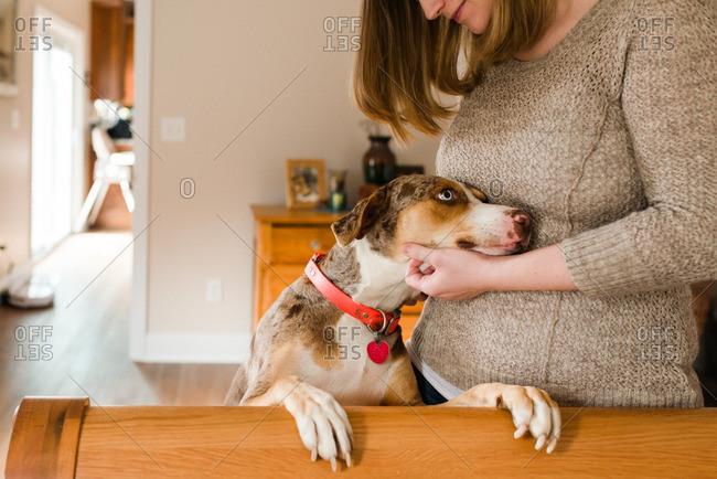 Woman scratching dog's chin