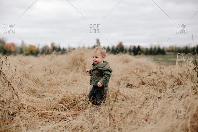 Toddler boy in fall field
