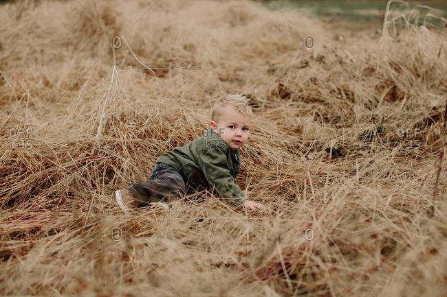 Toddler boy lying in fall field