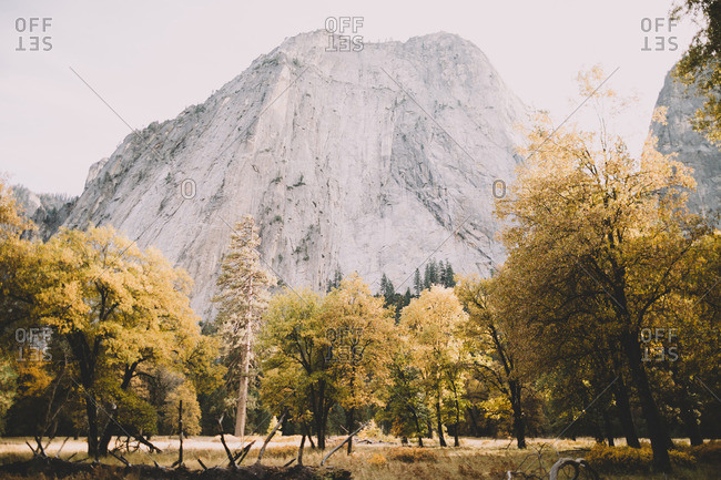 Autumn view in Yosemite National Park
