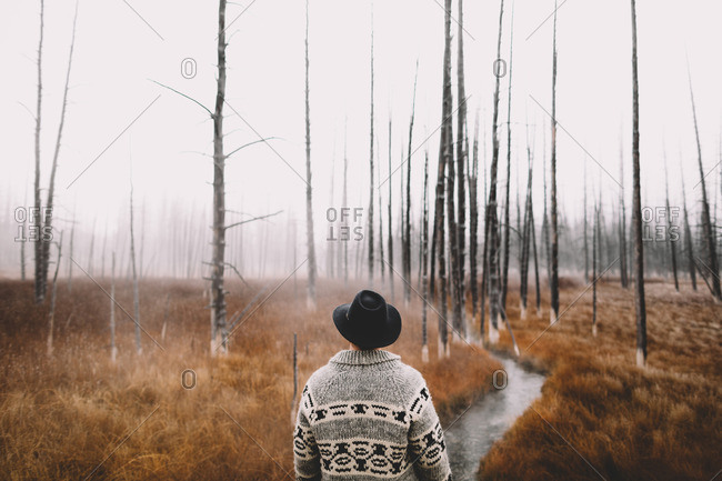 Man by bare trees in rural setting