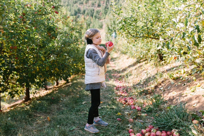 Girl eating an apple in an orchard