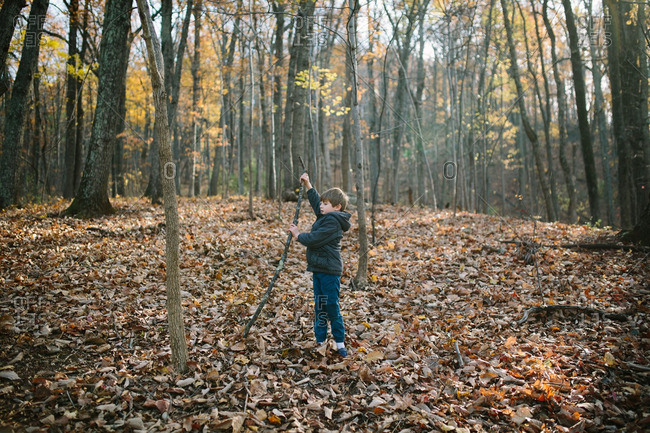 Boy playing with a branch in the forest