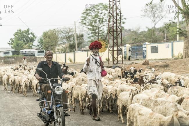 Udaipur, India - June 29, 2016: Tribal shepherd in Udaipur, India