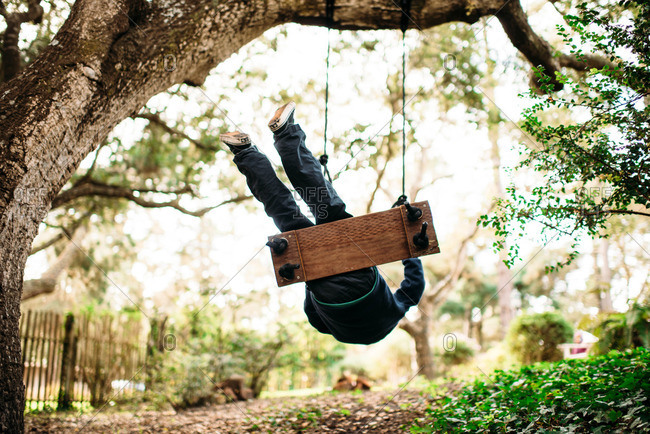 Boy swinging on a rope swing from a tree
