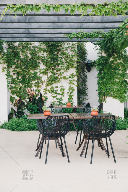 Table and chairs beneath an ivy covered pergola