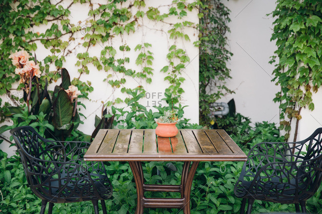 Table and chairs adjacent to ivy covered wall