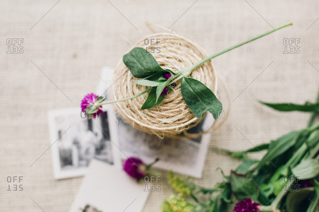 Spool of twine, and flower with old photographs
