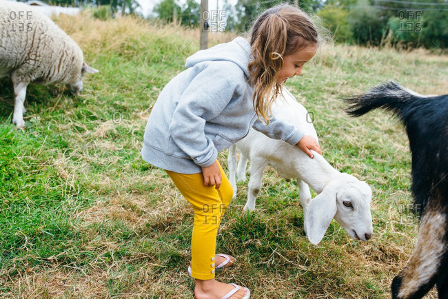 Young girl petting a goat