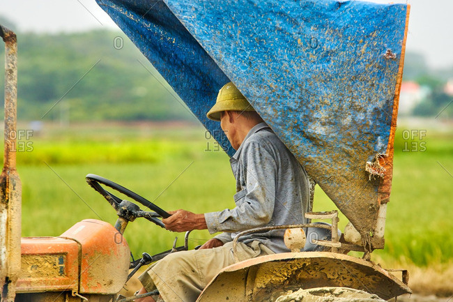 Hanoi, Vietnam - July 19, 2016: Farmer tilling his rice paddy
