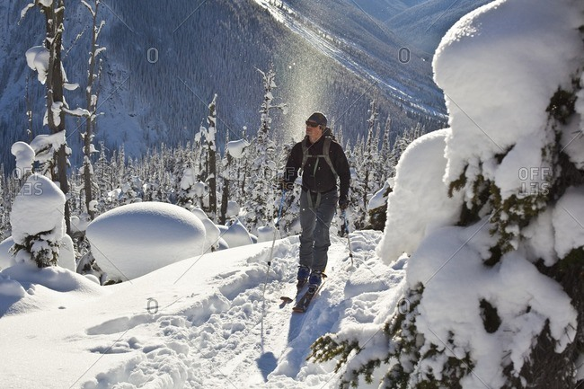 British Columbia, Canada - January 2, 2011: A male ski tourist skinning uphill in search of perfect powder