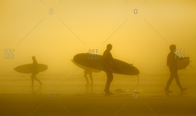 Silhouette of surfers in the fog, Long Beach, Pacific Rim National Park, Vancouver Island, British Columbia, Canada