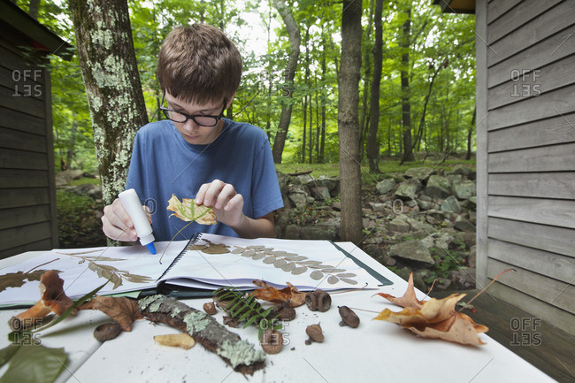 Caucasian boy with nature scrapbook outdoors