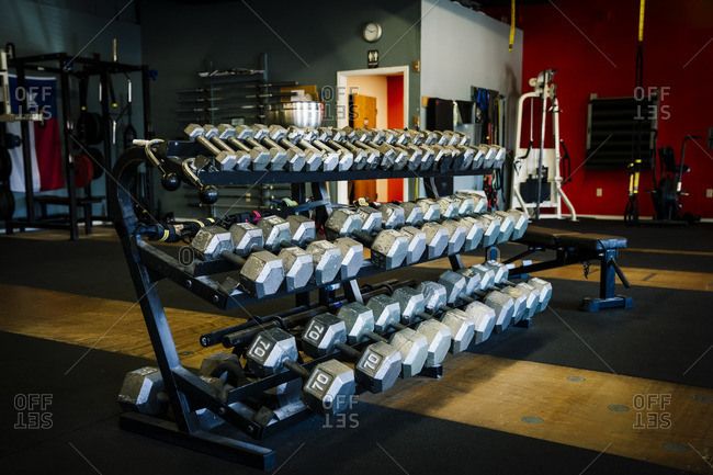 Dumbbells on rack in gymnasium