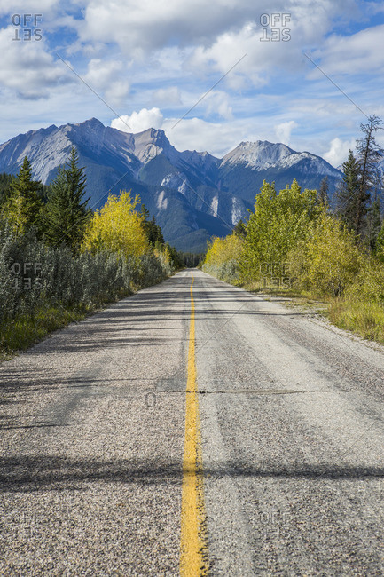 Empty tree-lined road to mountain
