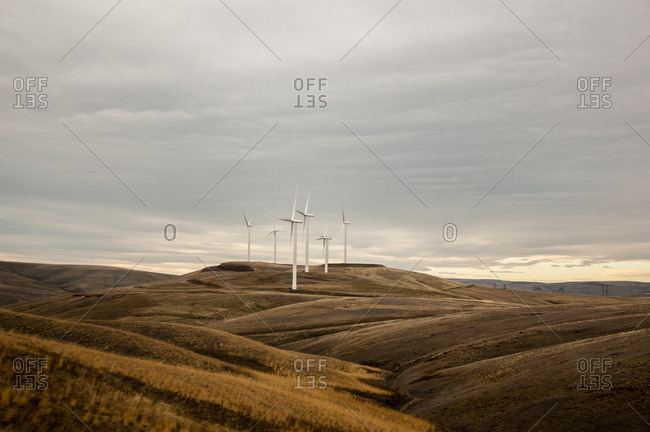 Wind farm on rolling landscape, Condon, Oregon, USA