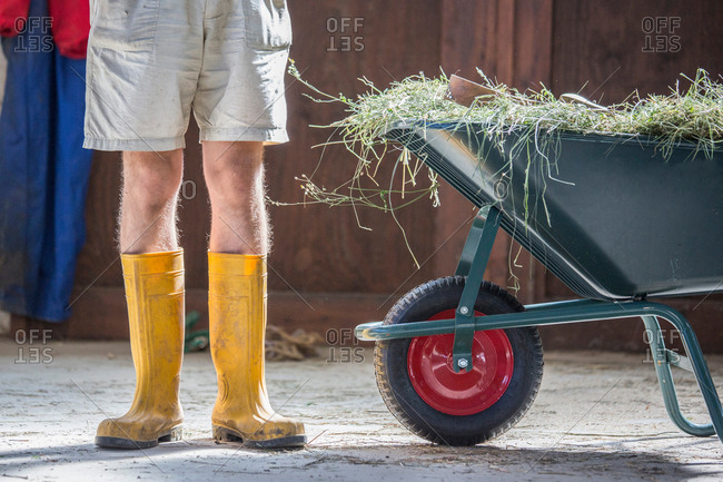 Waist down view of young male farmworker in yellow rubber boots