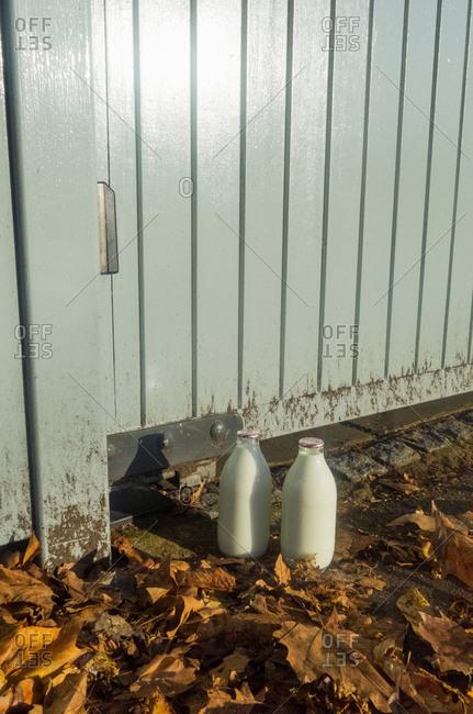 Two bottles of milk outside back gate