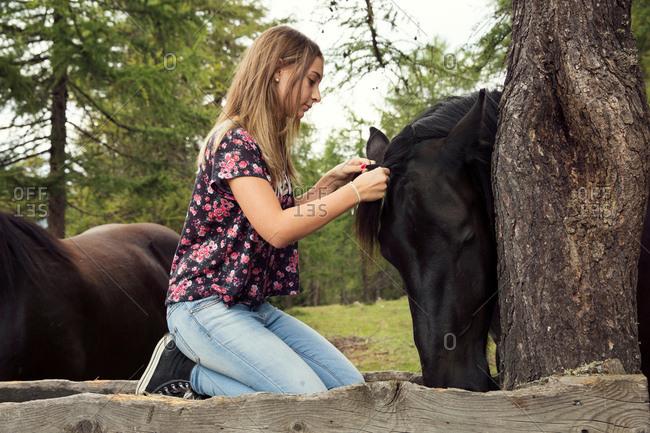 Girl kneeling to plait horse mane in forest, Sattelbergalm, Tyrol, Austria
