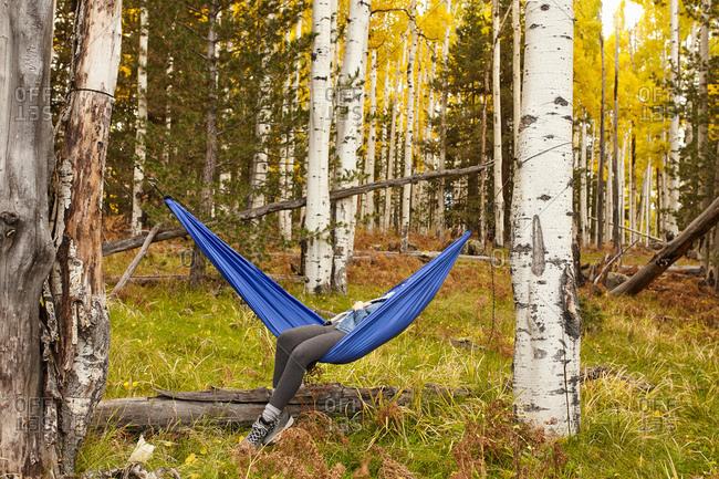 Woman relaxing in hammock, Flagstaff, Arizona, USA