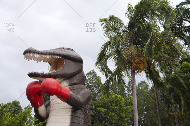 Crocodile statue wearing boxing gloves