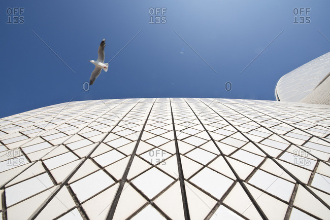 Sydney, Australia - December 11, 2015: Bird over exterior of Opera House
