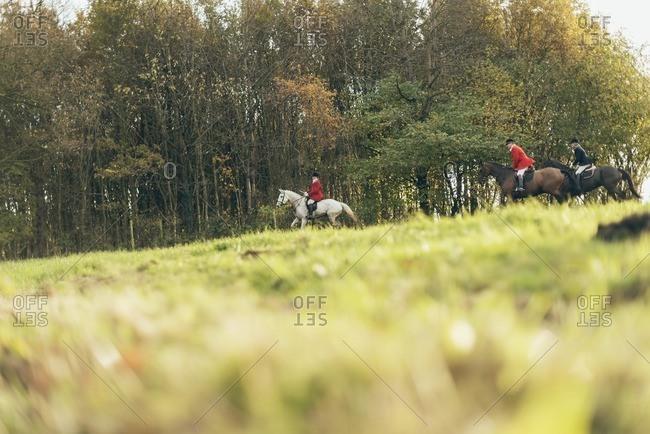 Geesteren, Achterhoek, Gelderland, The Netherlands - November 19, 2016: Men horse riding in field for drag hunting.