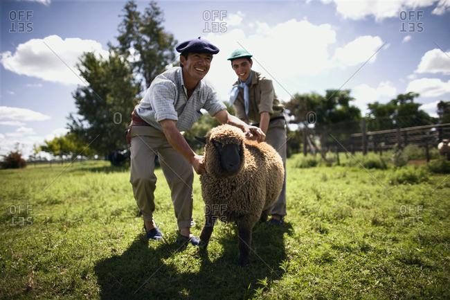 Farmers handling a sheep - Offset