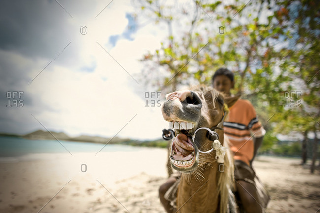 Young boy riding his horse on the beach.