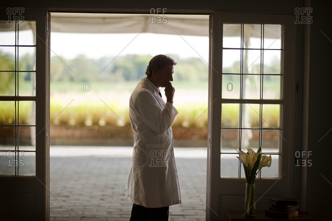 Thoughtful doctor standing next to French doors.