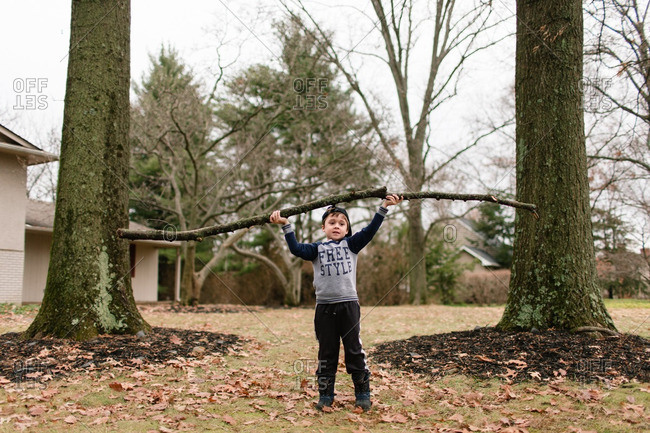 Little boy lifting fallen branches in the air
