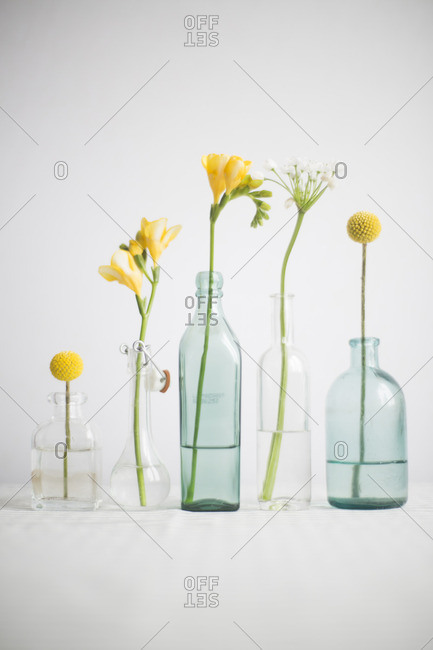 Yellow flowers in bottles