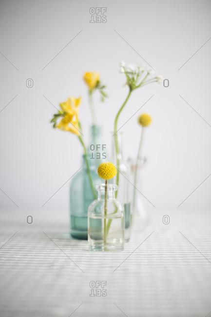 Single stem flowers in bottles