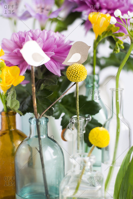 Flower stems in bottles