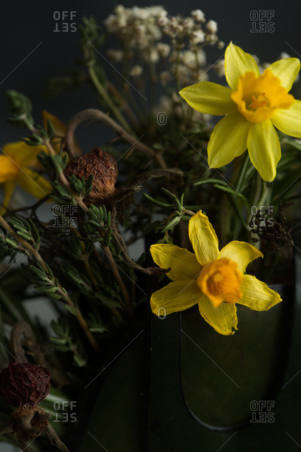 Daffodils and dried flowers - Offset