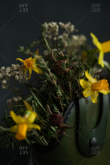 Daffodils and wilted flowers