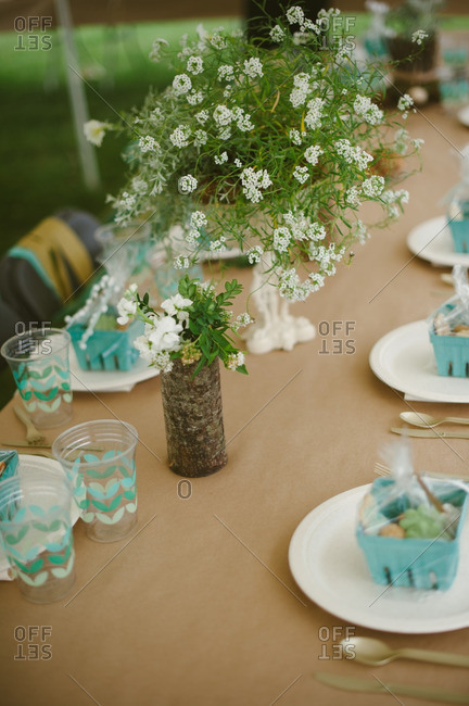 Table set for a backyard bridal shower
