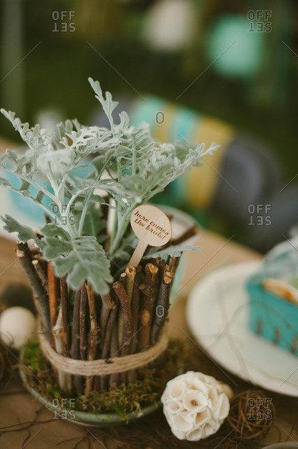 Table decor at a rustic backyard bridal shower