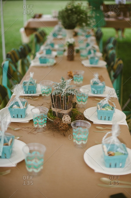 Table set for a rustic backyard bridal shower