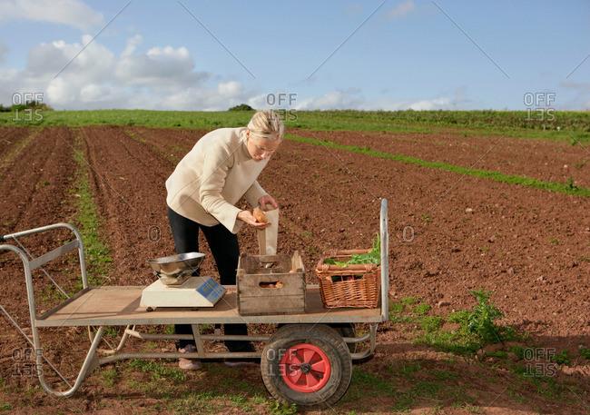 Farm worker assesses crops - Offset