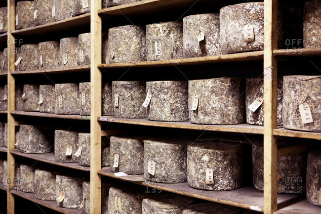 Cheese sitting on shelves.