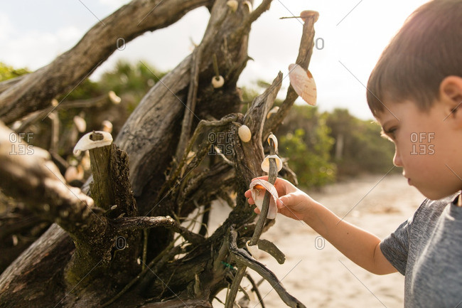 Boy decorating a tree with shells