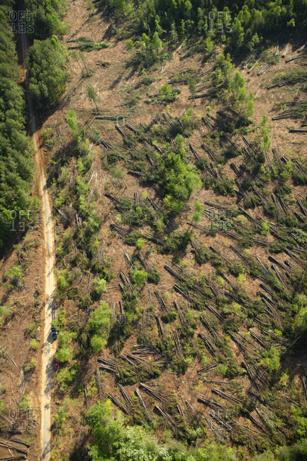 Aerial view of a clearcut logging operation in action on top of the Cumberland Plateau near Jasper, TN.