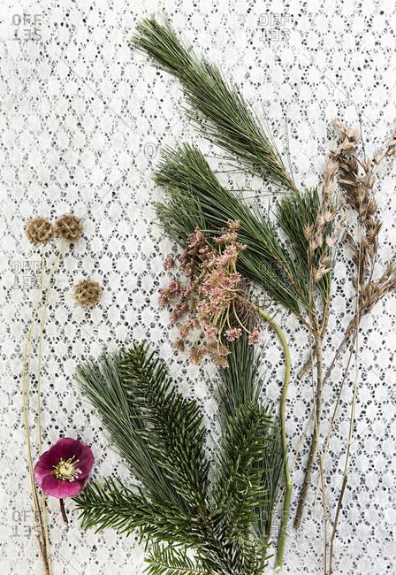 Still life of pine needs and flowers