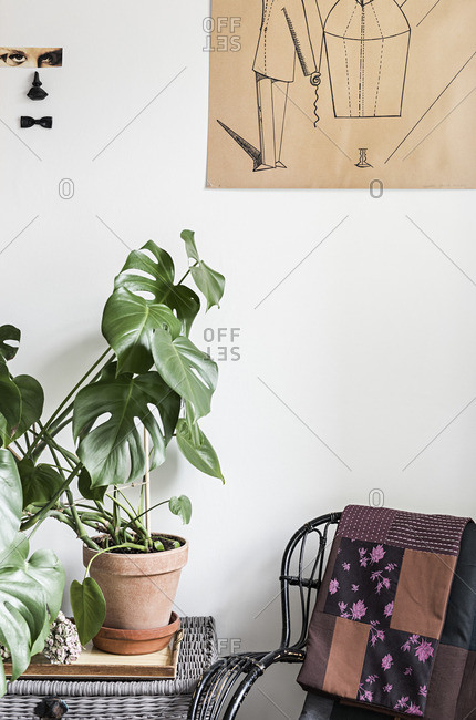 Potted plant on a whicker table