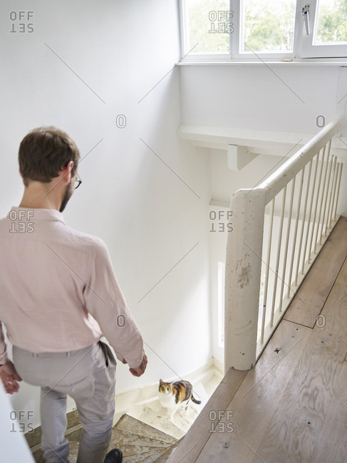 Man walking down stairs towards a cat