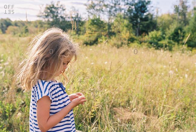 Little girl standing in a field holding a flower